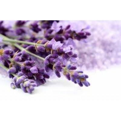 Fragrance Oil -Lavender