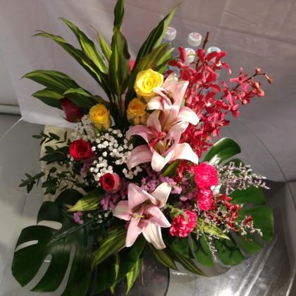 Opening / Health / appreciation/ Celebration Fresh Flower Basket