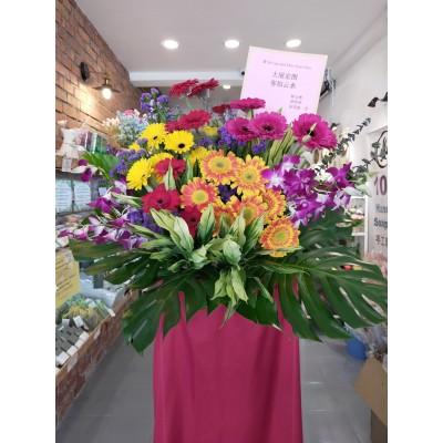 Opening flower arrangement-Gerbera-Single layer
