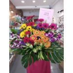 Opening flower arrangement-Gerbera-Single layer