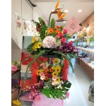 Opening Flower with Hydrangea & Paradise Bird-Double layer